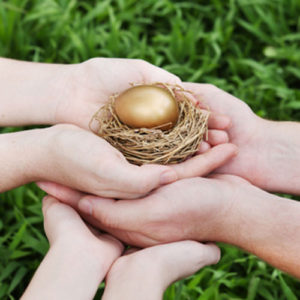 nest egg protection