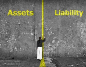 assets and liablity