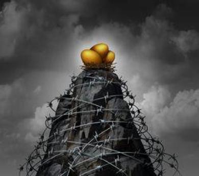nest egg protection