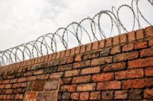 wall razor wire trust
