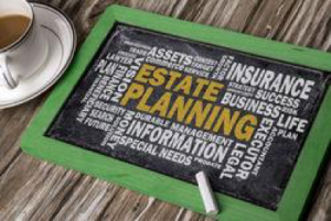 estate planning information