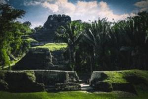 Belize Trust