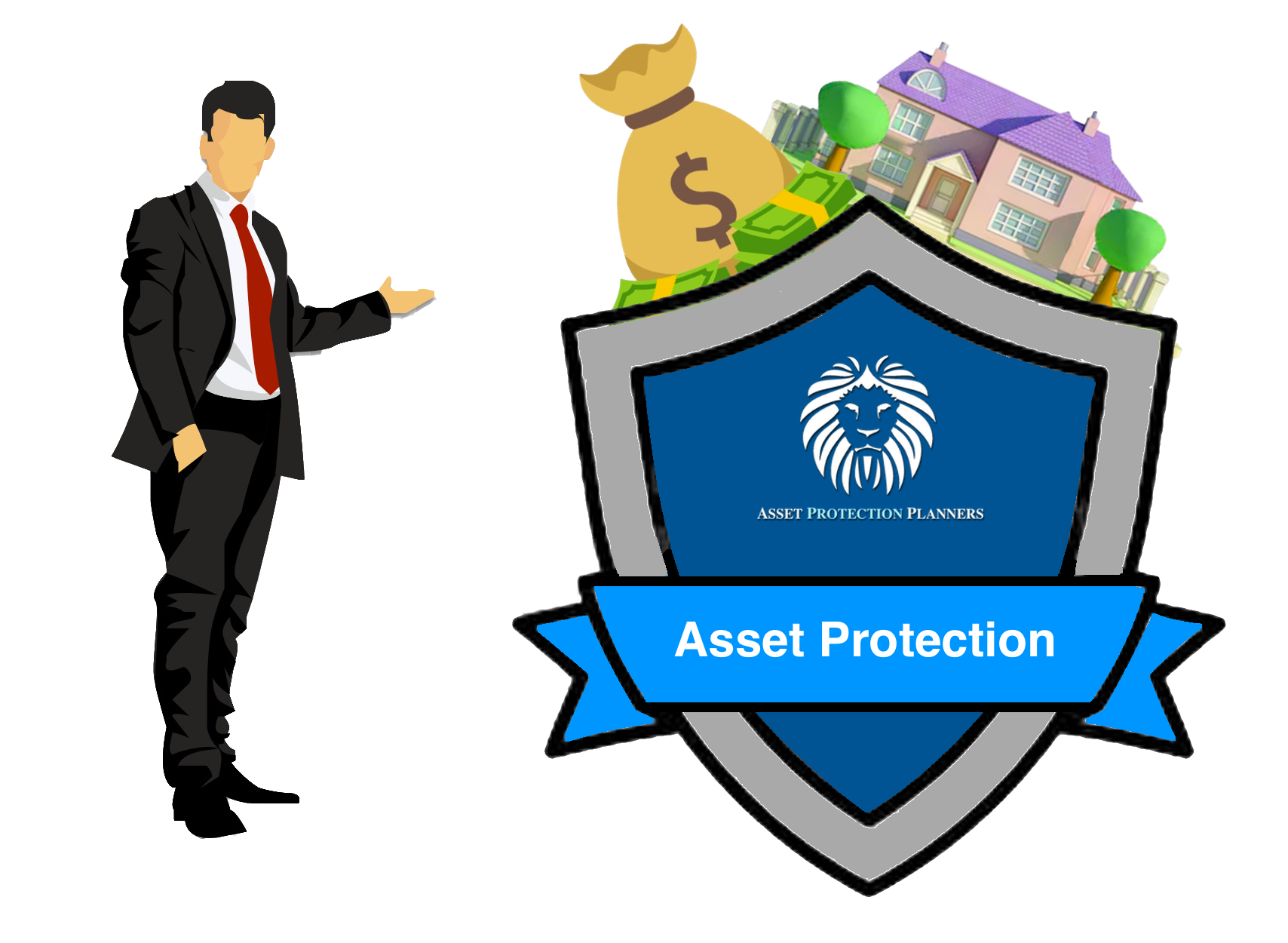 Asset Protection Definition